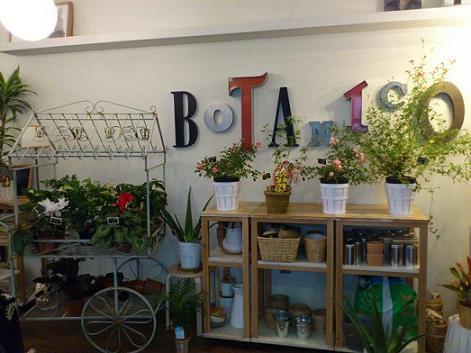 Café Botánico Zaragoza