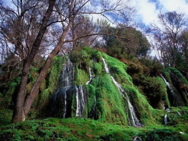 maravilloso en torno natural para una boda en Zaragoza